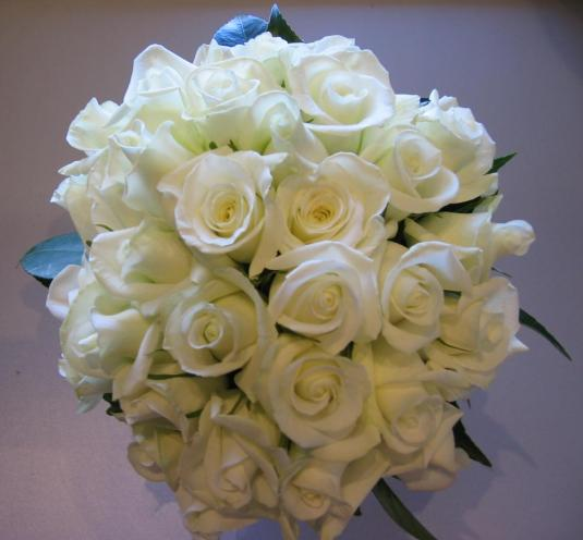 white roses flowers wallpapers (4)