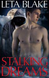 stalking-dreams-web-copy