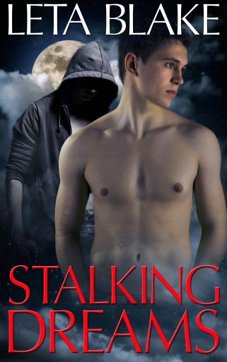 stalking-dreams-web-copy