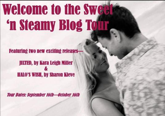 Sweet 'n Steamy Blog Tour new